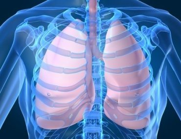 BRAND NEW: DISCOVER TOP 5 BEST FOODS TO CLEANSE YOUR LUNGS - VIDEO