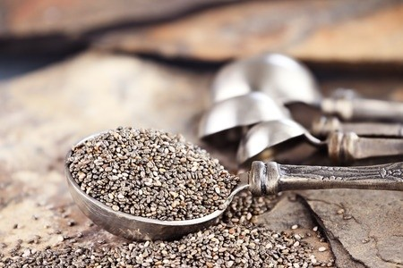 10 Powerful Reasons Why You Should Eat Chia Seeds